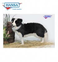 Border Collie Standing 33''L       (4563) - FREE SHIPPING!