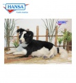 Border Collie Lying 34''L     (4564)