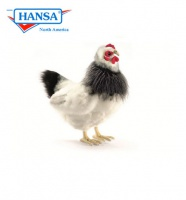 French Hen Black and White 12''        (5620)