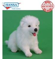 Samoyed Puppy (5267)