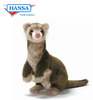 Ferret, Brown (4556)