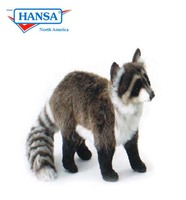 Raccoon Standing (5181)