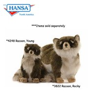 Racoon, Rocky (3822)