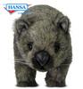 Wombat (3248)
