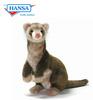 Ferret, Brown (4556)