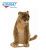 Mountain Lion/Cougar (4255)