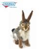 Rabbit, Blacktail Medium (3754)