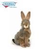 Rabbit, Bunny (3581)